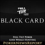 Full Tilt Poker goes Whale Hunting
