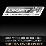 Bird at the Top of the Tree after UKIPT London Day 1B