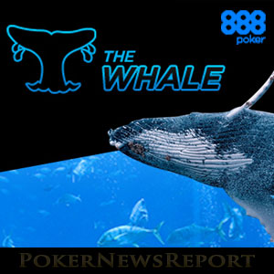 Whale Tournament at 888